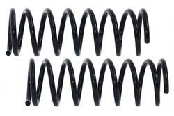MAPCO 70637/2 Suspension Kit, coil springs