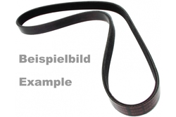 MAPCO 250875 V-Ribbed Belt