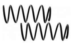 MAPCO 71899/2 Suspension Kit, coil springs