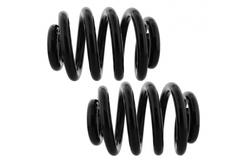 MAPCO 72806/2 Suspension Kit, coil springs