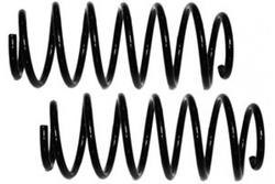 MAPCO 70805/2 Fahrwerksfedern Satz Vorderachse Schraubenfeder